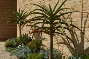 Working With Natural Stone In Garden Design | Guest Blog 03