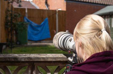 How To Photograph Garden Birds