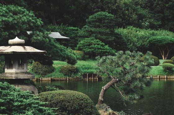 Japanese Gardens In The UK