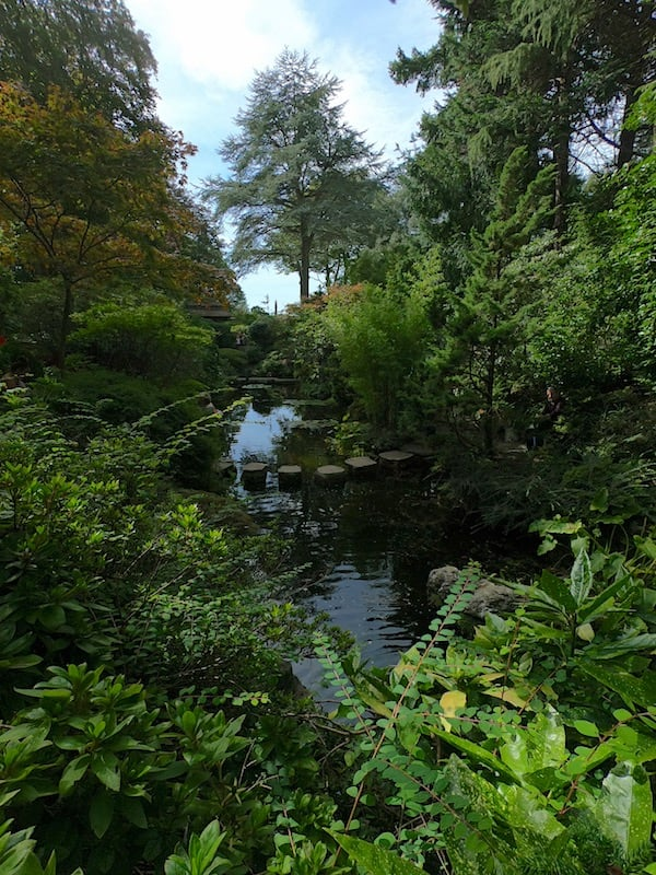 The Japanese Garden at Compton Acres 13