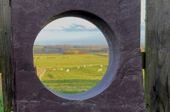 Valley View Window Stone