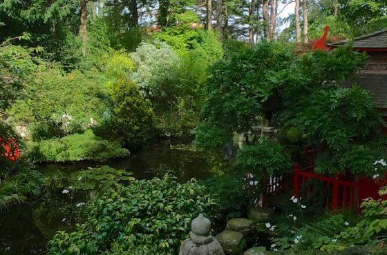 The History of Japanese Garden Design